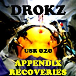 Drokz - Appendix Recoveries (2007)
