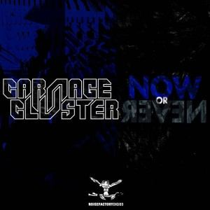 Carnage & Cluster - Now Or Never (2017)