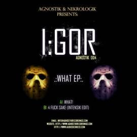 I:gor - What EP (2011)