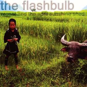 The Flashbulb - Resent And The April Sunshine Shed (2003)