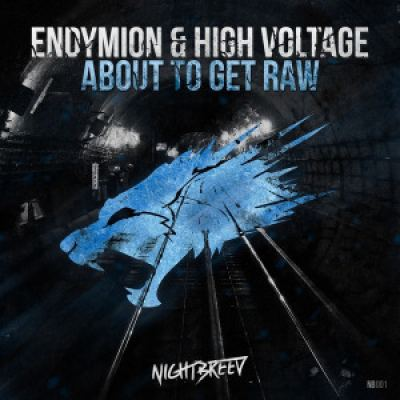 Endymion & High Voltage - About To Get Raw (2015)