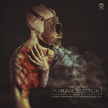 Dark Like Hell - Natural Selection (The Remixes) (2015)