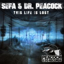 Sefa & Dr. Peacock - This Life Is Lost (2016)