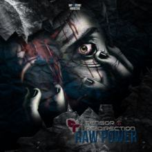 Tensor & Re-Direction - Raw Power (2015)