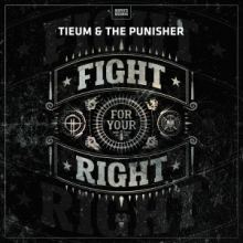 Tieum & The Punisher - Fight For Your Right (2016)