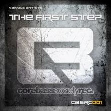 VA - The First Step (2014)