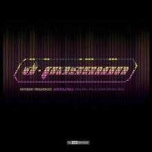 D-Passion - Different Frequencies (2011)