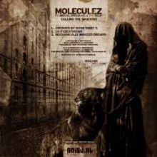Moleculez ft. Mental Wreckage & The Relic - Calling The Shadows (2010)