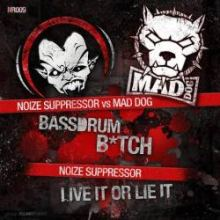 Noize Suppressor vs. Mad Dog - Bassdrum Bitch (2011)