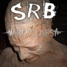 S.R.B. - Everything Is Fucked (2010)