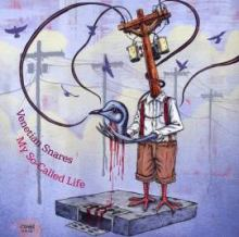 Venetian Snares - My So-Called Life (2010)